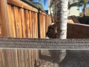 Low Pool Fence Quality with sun rot